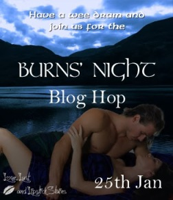 www burnsnightbloghop